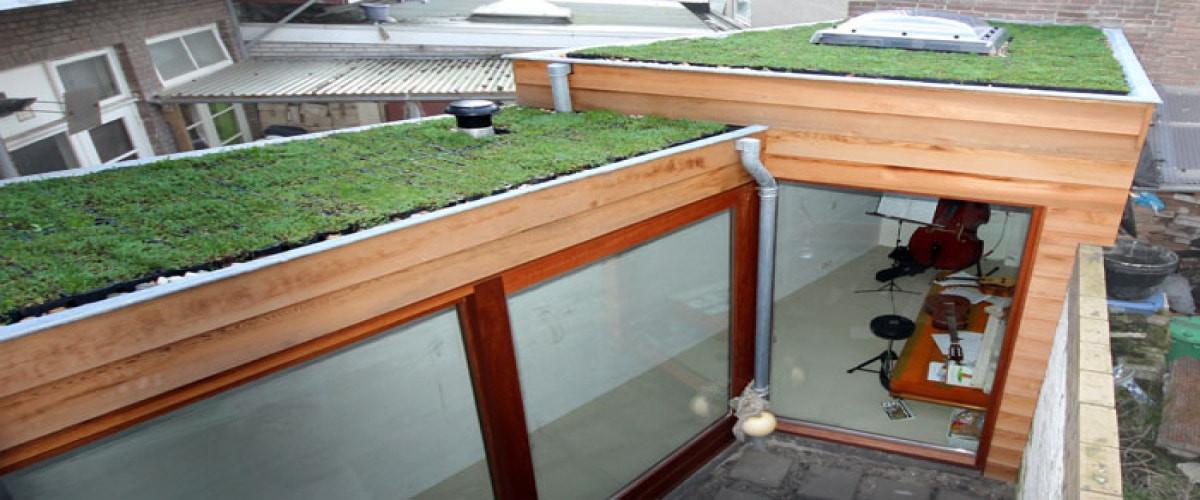 groen-sedum-dak-duurzaam